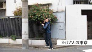 #たけさんぽ東京 で自由気ままなフォトウォークをしてきたよ。
