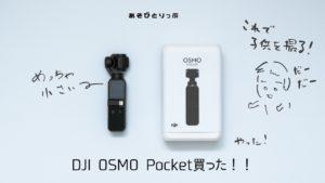 『DJI OSMO Pocket』購入!初めてのジンバル搭載カメラで家族を撮る。