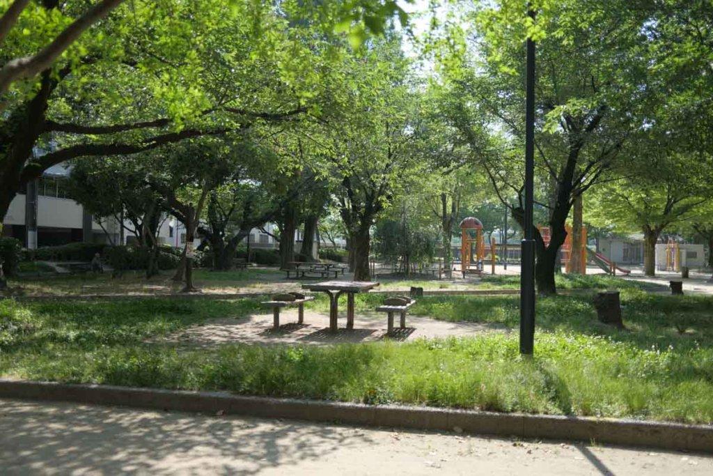 お店の前は公園